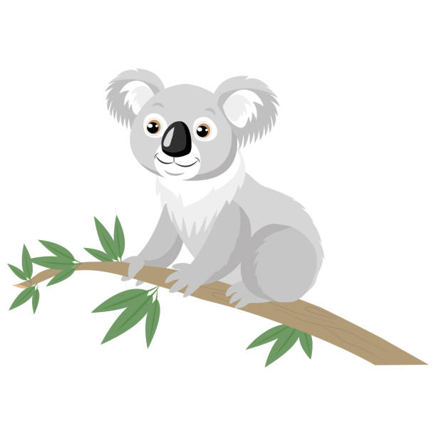 koala bear on wood branch with green leaves. - koala stock illustrations
