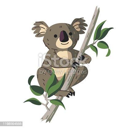 istock Koala 1198564555