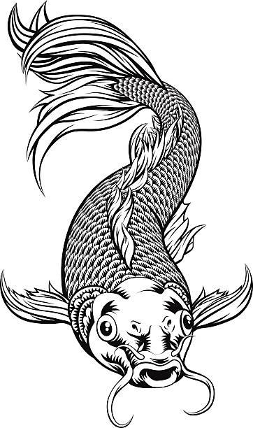 Royalty free koi carp clip art vector images for Koi carp art