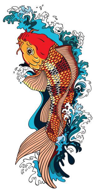 stockillustraties, clipart, cartoons en iconen met koi karper goudvis stroomopwaarts zwemt - carp