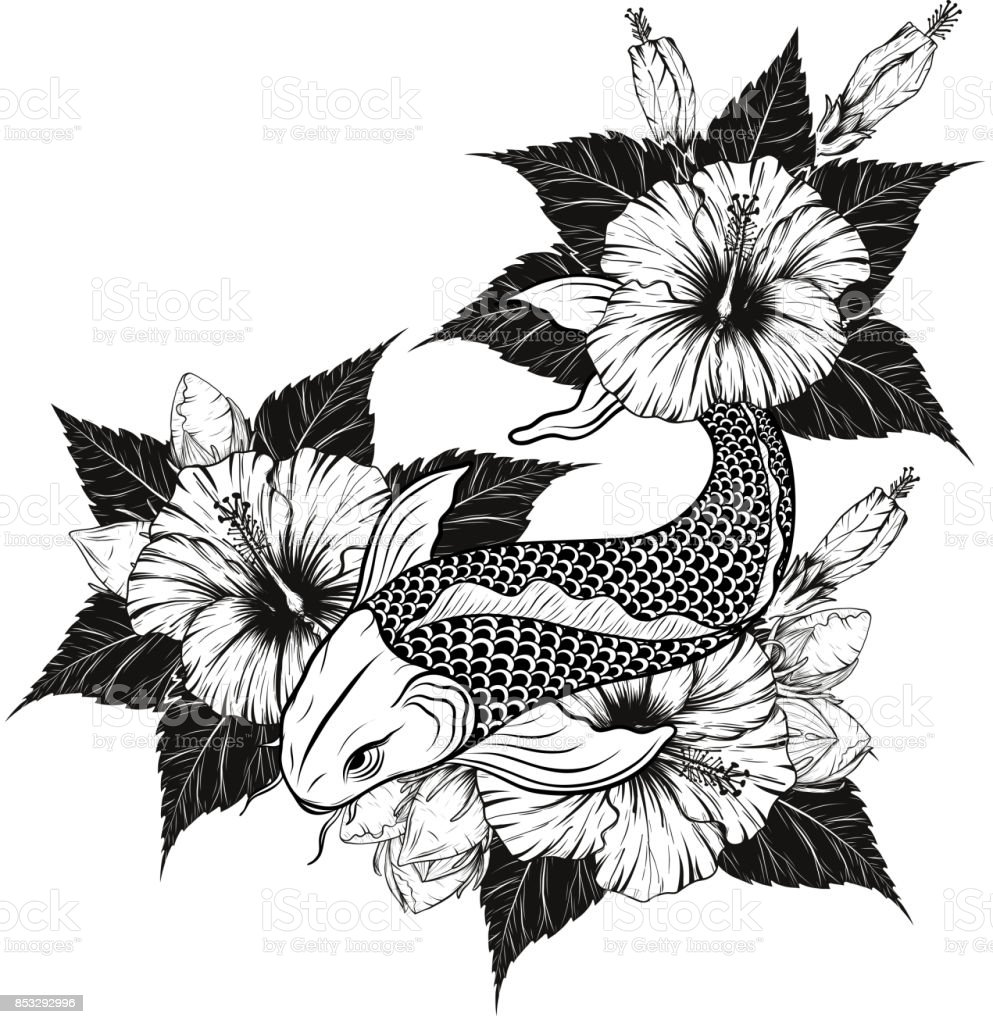 Koi Fish And Hibiscus Tattoo By Hand Drawing Stock Vector Art More