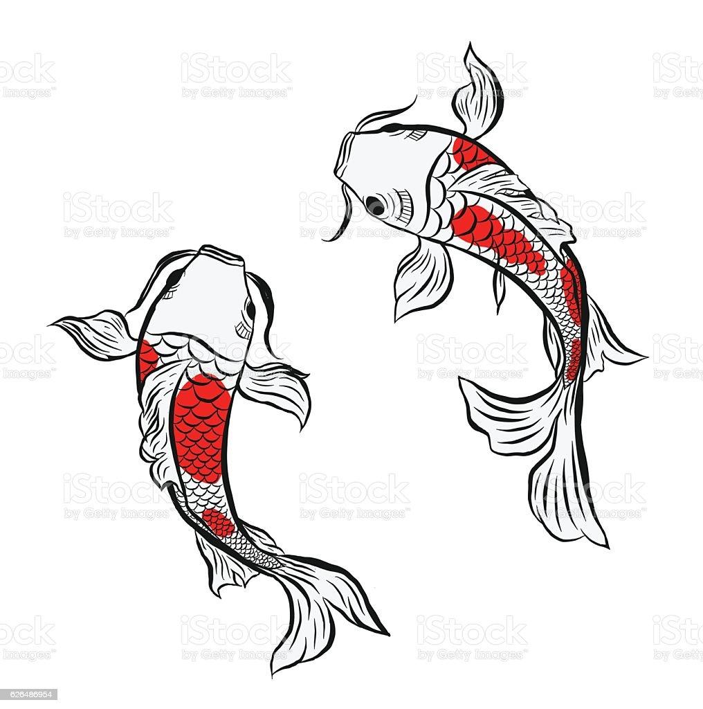 koi fish, illustration vector art illustration