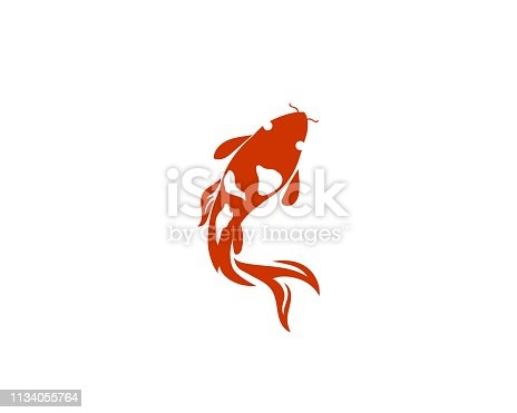 Koi fish  twin jump on white background
