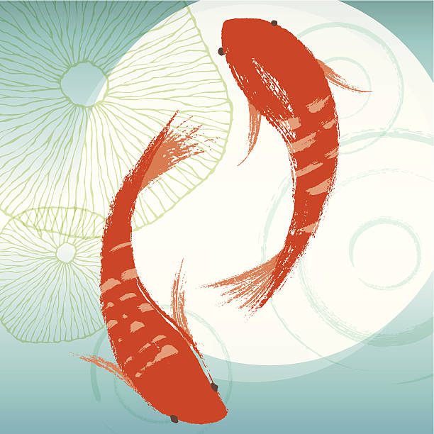 stockillustraties, clipart, cartoons en iconen met koi fish & lotus leaf - carp