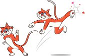 vector illustration of  a cat doing kung fu