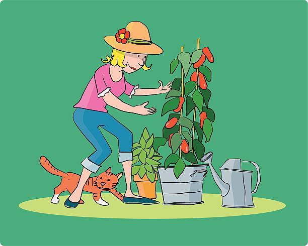la giardiniera - palmenherzen stock-grafiken, -clipart, -cartoons und -symbole