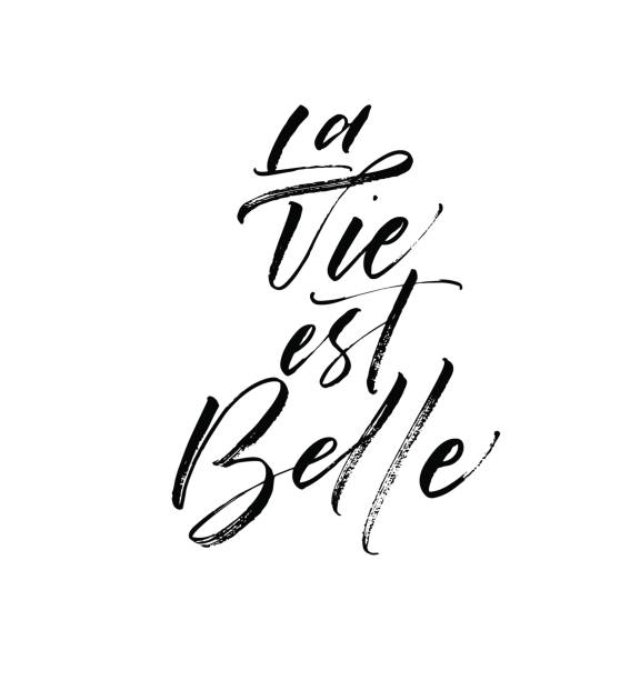 La vie est belle card. La vie est belle postcard. French expression. In English - life is beautiful. Ink illustration. Modern brush calligraphy. Isolated on white background. french language stock illustrations