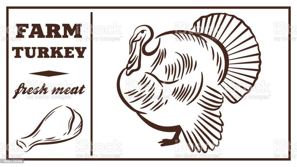 Label of meat products. Turkey. Poultry meat vector art illustration