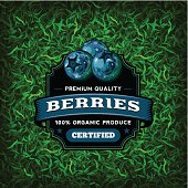 A vintage styled label featuring blueberries. EPS 10 file, layered & grouped, with meshes and transparencies (shadows & overall effects only).