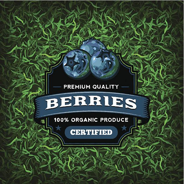 F&B Labels - Blueberries vector art illustration