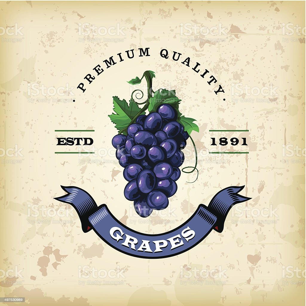 F&B Labels - Grapes vector art illustration