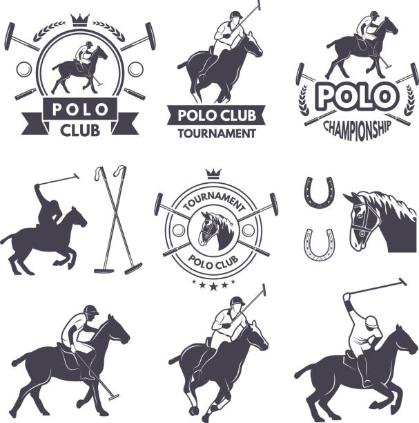 Labels set of sport competition for polo games vector art illustration