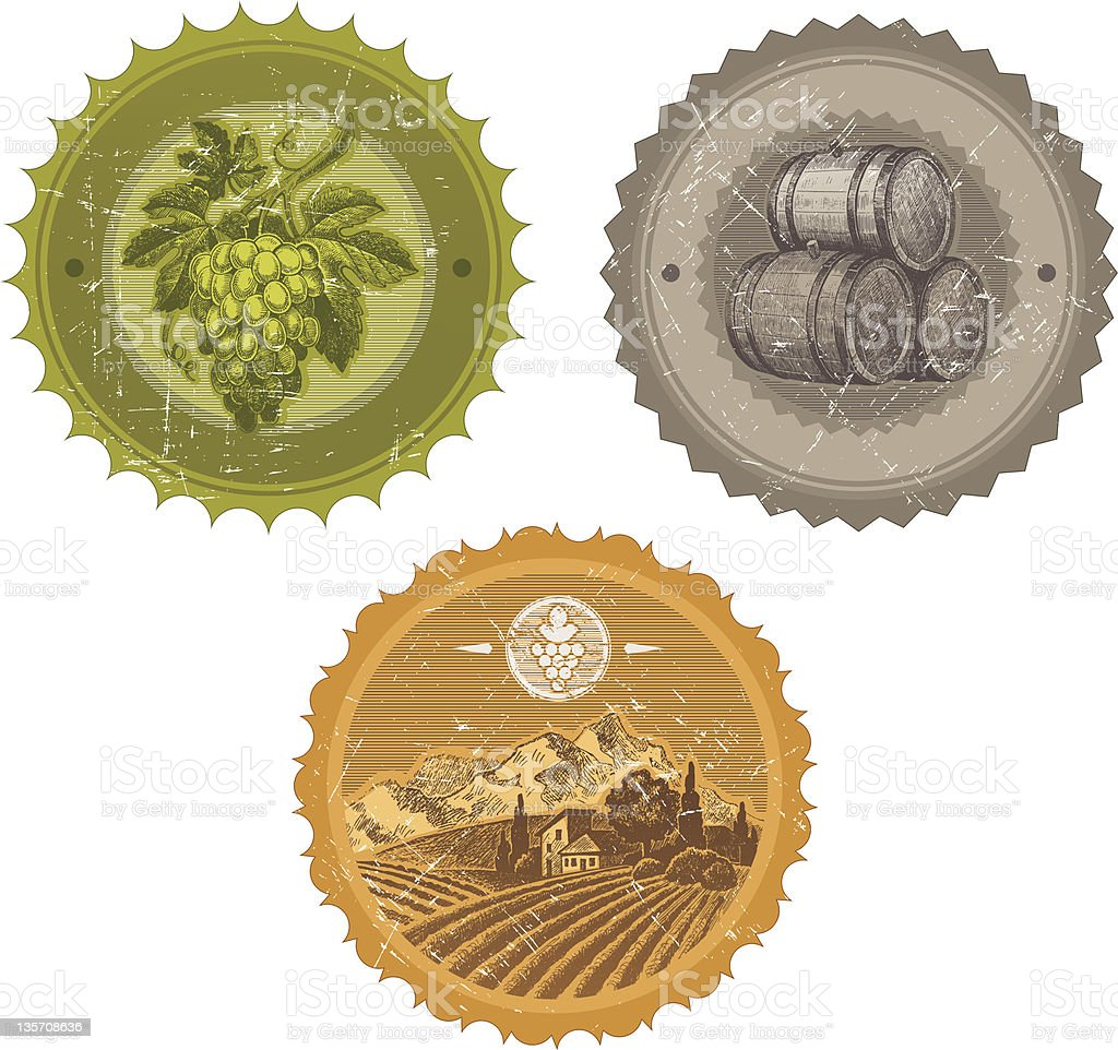 Labels with hand drawn elements - viticulture and winemaking royalty-free stock vector art