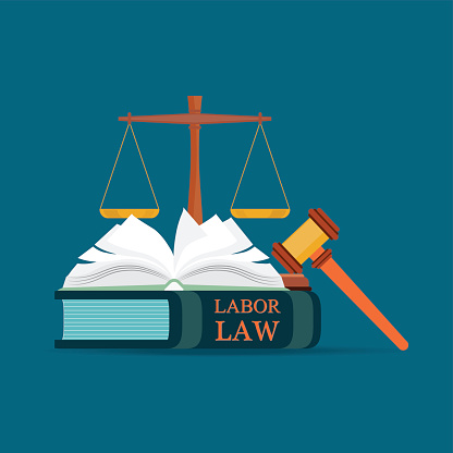 The Developing Labor Law: The Board, the Courts, and the National Labor…