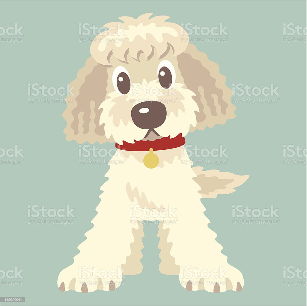 Labradoodle,Goldendoodle royalty-free stock vector art
