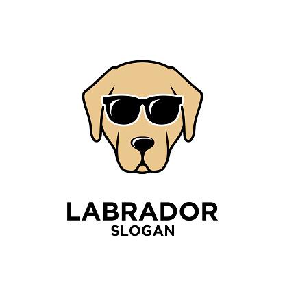 labrador dog head face logo icon design template