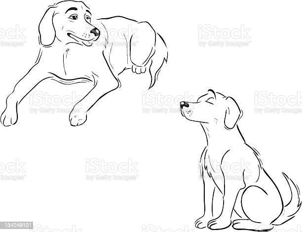 Labrador dogs outline vector id134249101?b=1&k=6&m=134249101&s=612x612&h=txksmhojda1ifw0vyayxft5su5rotmmu h8vycmrjis=