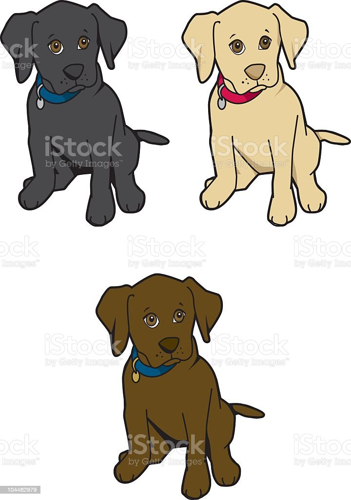 Labrador Puppies Stock Vector Art & More Images of Animal 104462979 ...