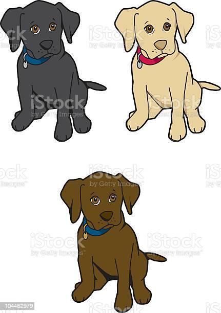 Labrador puppies vector id104462979?b=1&k=6&m=104462979&s=612x612&h=amamql sjkbeteqeopixlkik7ubw9jbyf1wgxtqo53m=
