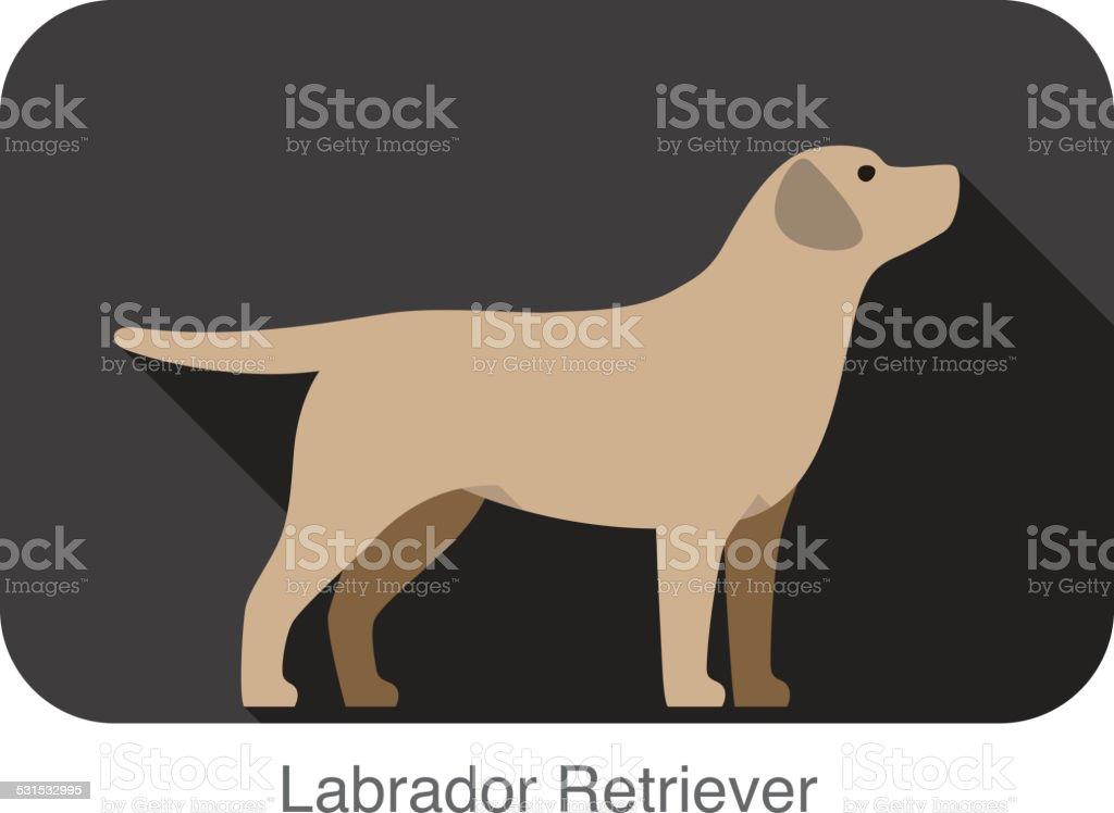 Labrador Retriever dog body flat icon design vector art illustration