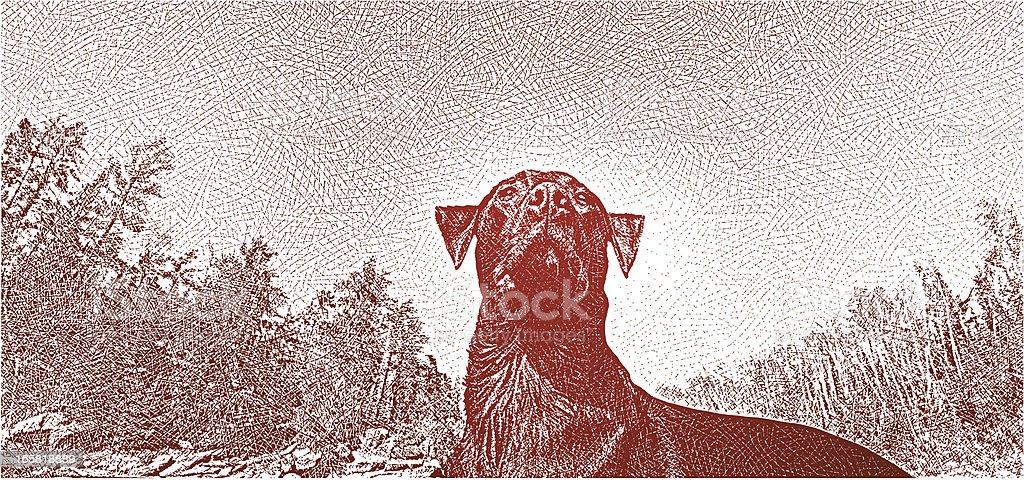 Labrador Retriever Outdoors vector art illustration