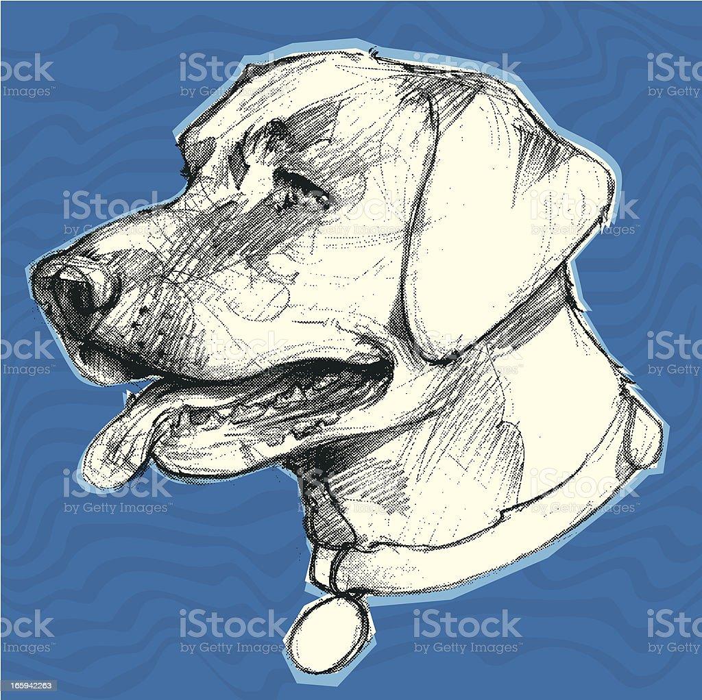 labrador retriever water background royalty-free stock vector art