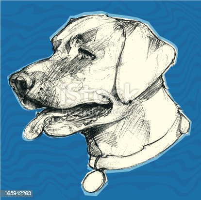 this is a hand drawn illustration of a Labrador retriever, change the color to your pleasing. the water back ground was to give the effect that they dogs love to swim or be near water.