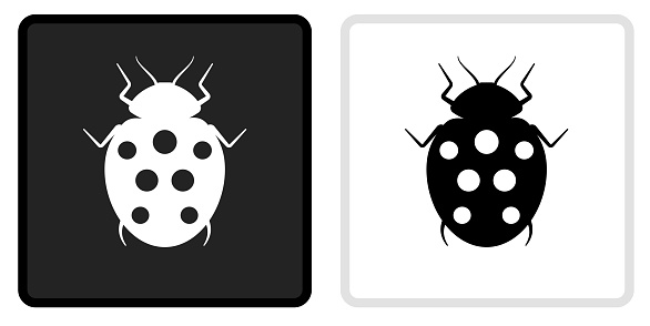 Lady Bug Icon on  Black Button with White Rollover