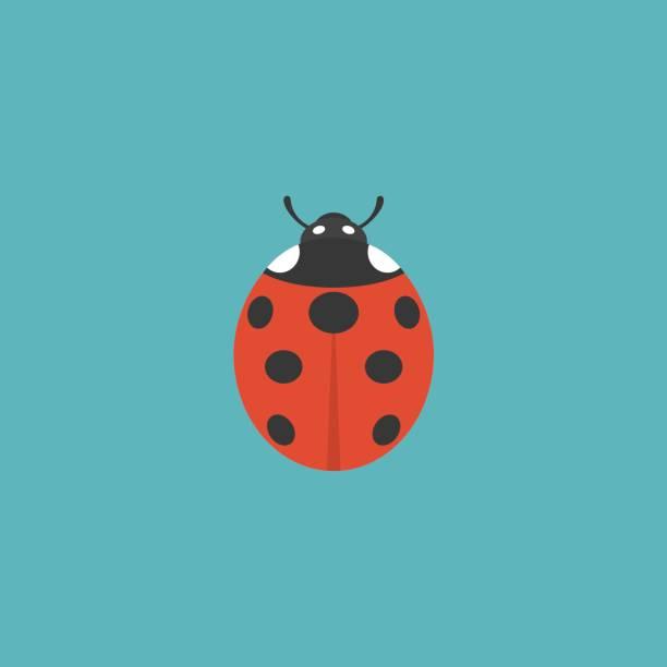 lady bug – artystyczna grafika wektorowa