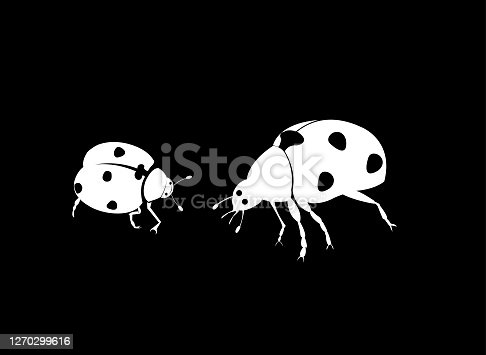 lady bird beetle,All elements are in separate layers color can be changed easily .