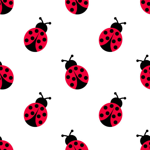 Ladybird decoration pattern. Ladybug seamless pattern design. – artystyczna grafika wektorowa
