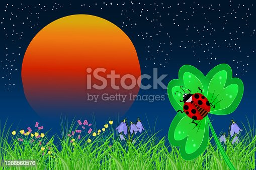 Beautiful night meadow with orange sun, green field and red beetle. Sunrise landscape. Stock vector illustration