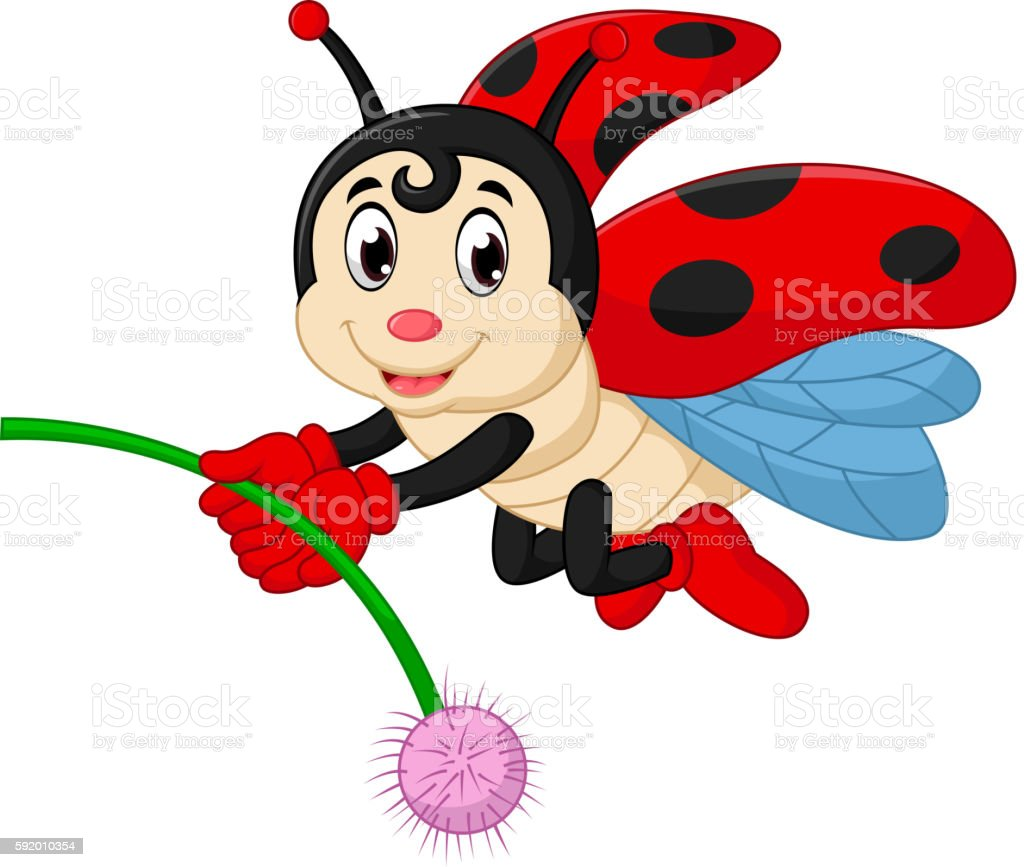 Ladybug Cartoon Royalty Free Ladybug Cartoon Stock Vector Art U0026amp; More  Images Of Animal