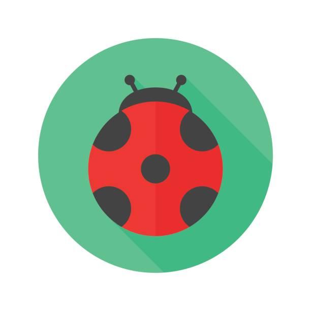 Ladybug flat design icon – artystyczna grafika wektorowa