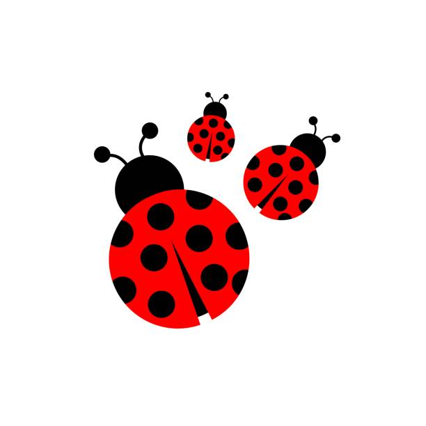 Ladybug icon vector – artystyczna grafika wektorowa