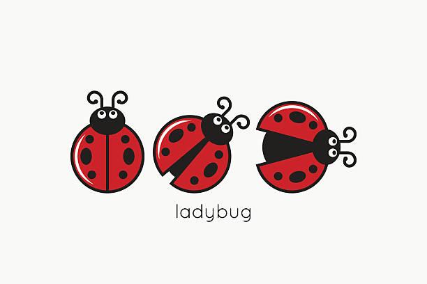 Ladybug Logo Set On White Design Background – artystyczna grafika wektorowa
