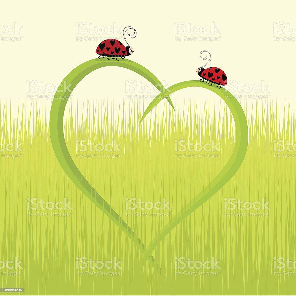 Ladybug love cartoon illustration royalty-free stock vector art