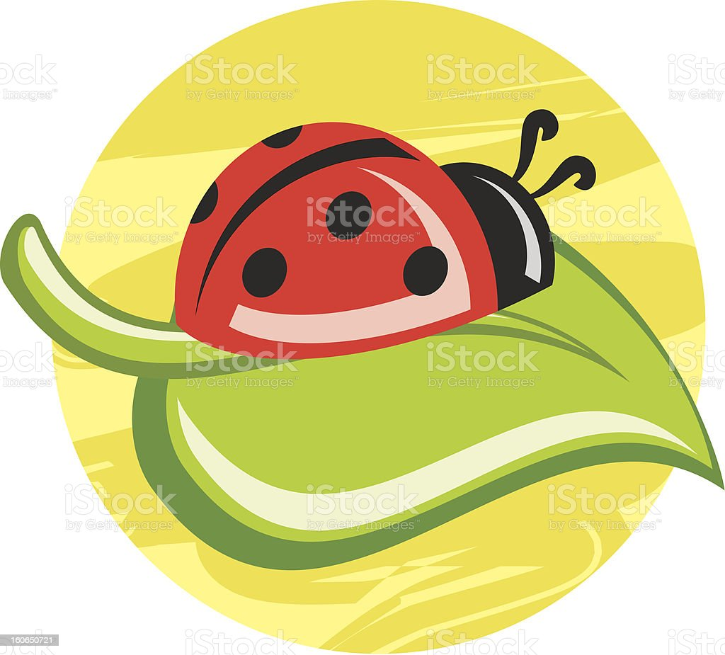 ladybug on the leave royalty-free ladybug on the leave stock vector art & more images of animal