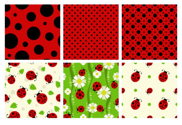 Ladybug patterns set – artystyczna grafika wektorowa