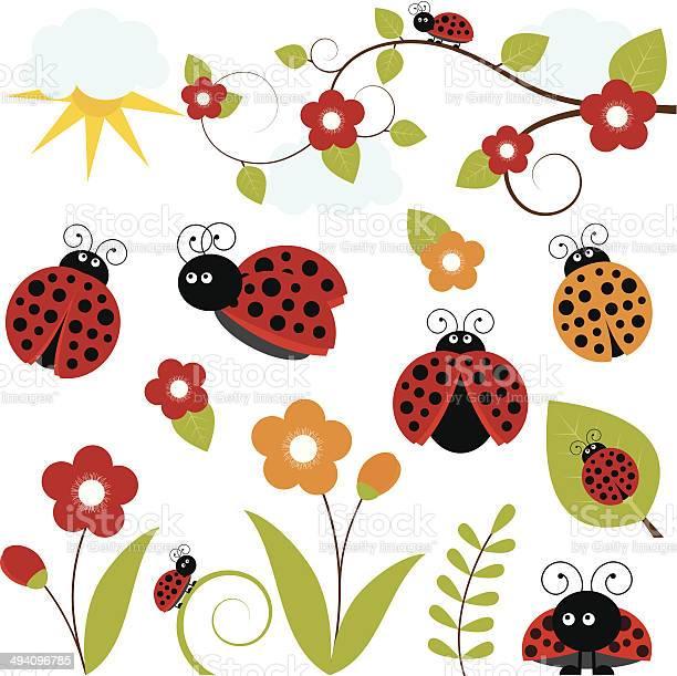 Ladybug set vector id494096785?b=1&k=6&m=494096785&s=612x612&h=22njm aljdl3abmoq13v9ywcca7ul2uwujnre kvwbg=