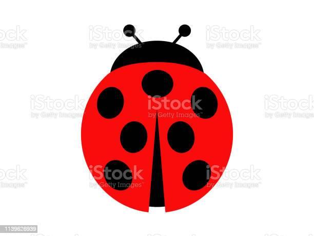 Ladybug vector id1139626939?b=1&k=6&m=1139626939&s=612x612&h=maktcamyw11q14e1x0ndbniflk 3bkrr79b 8kwzlz4=