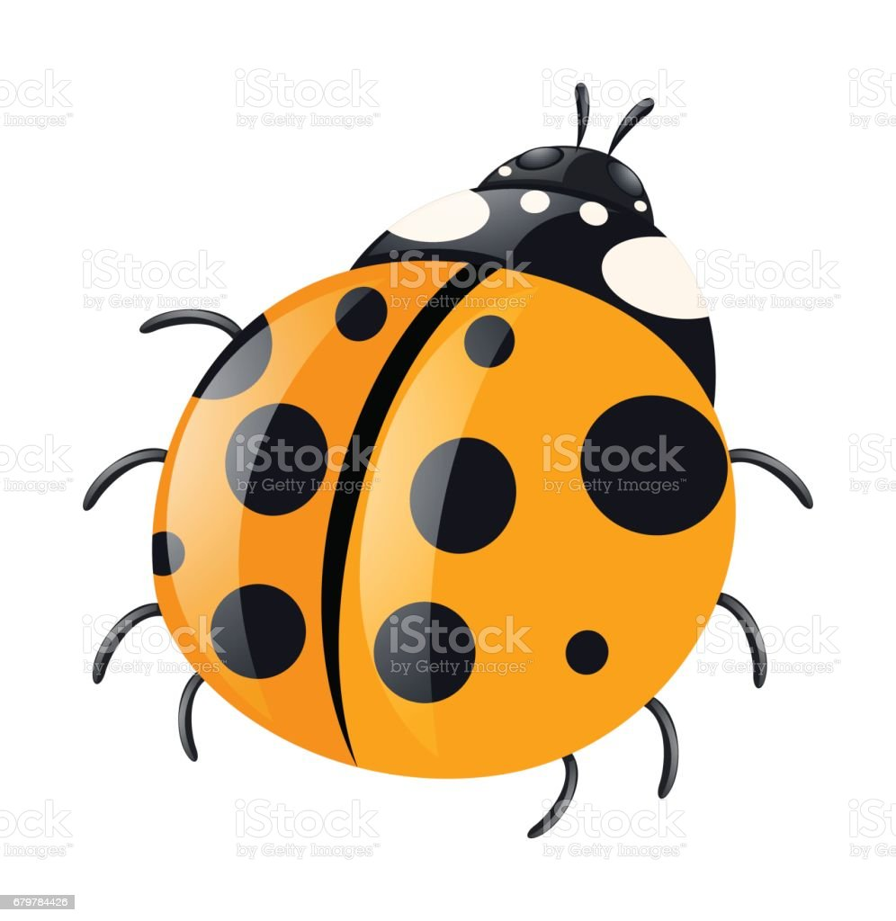 Ladybug with yellow wings vector art illustration
