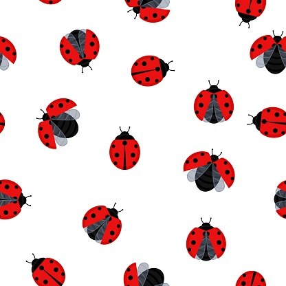 Ladybugs seamless pattern background beetle insect. Vector illustration