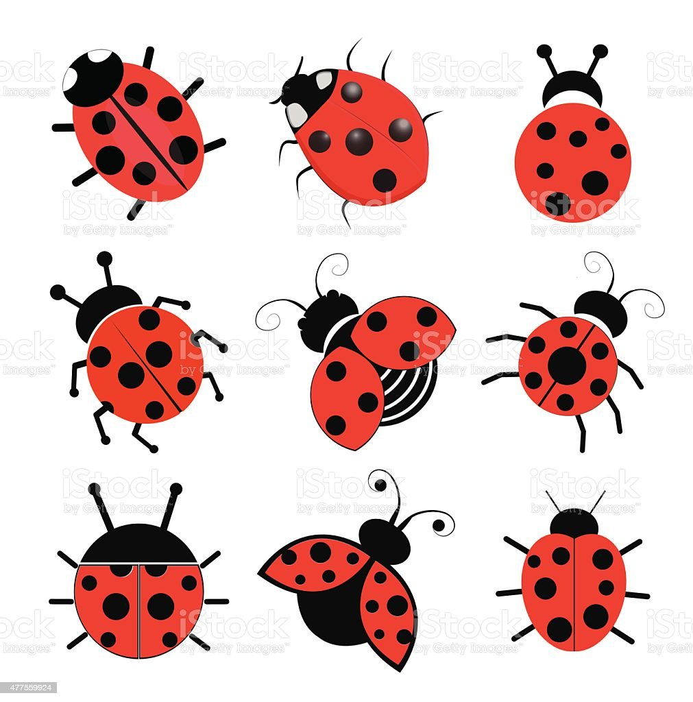 Ladybugs vector art illustration