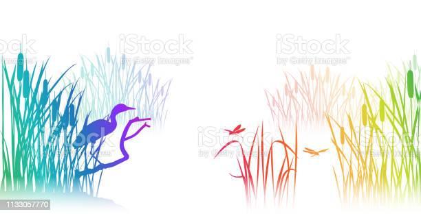 Lagoon rainbow vector id1133057770?b=1&k=6&m=1133057770&s=612x612&h=fopmz8quee o7ejqhafqbxkncxtcu9rhtxyqbkffzhy=
