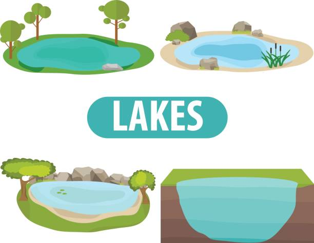 lake, a set of lakes with trees and stones - pond stock illustrations