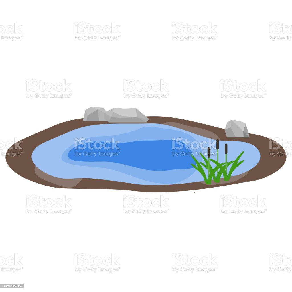 Lake, lake with rocks and reeds, water. vector art illustration