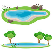 Lake, realistic lake with reeds and trees. Vector illustration of a lake.