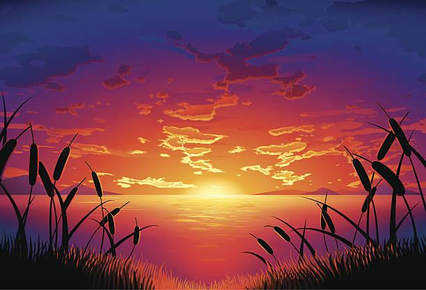lakeside sunset vector art illustration