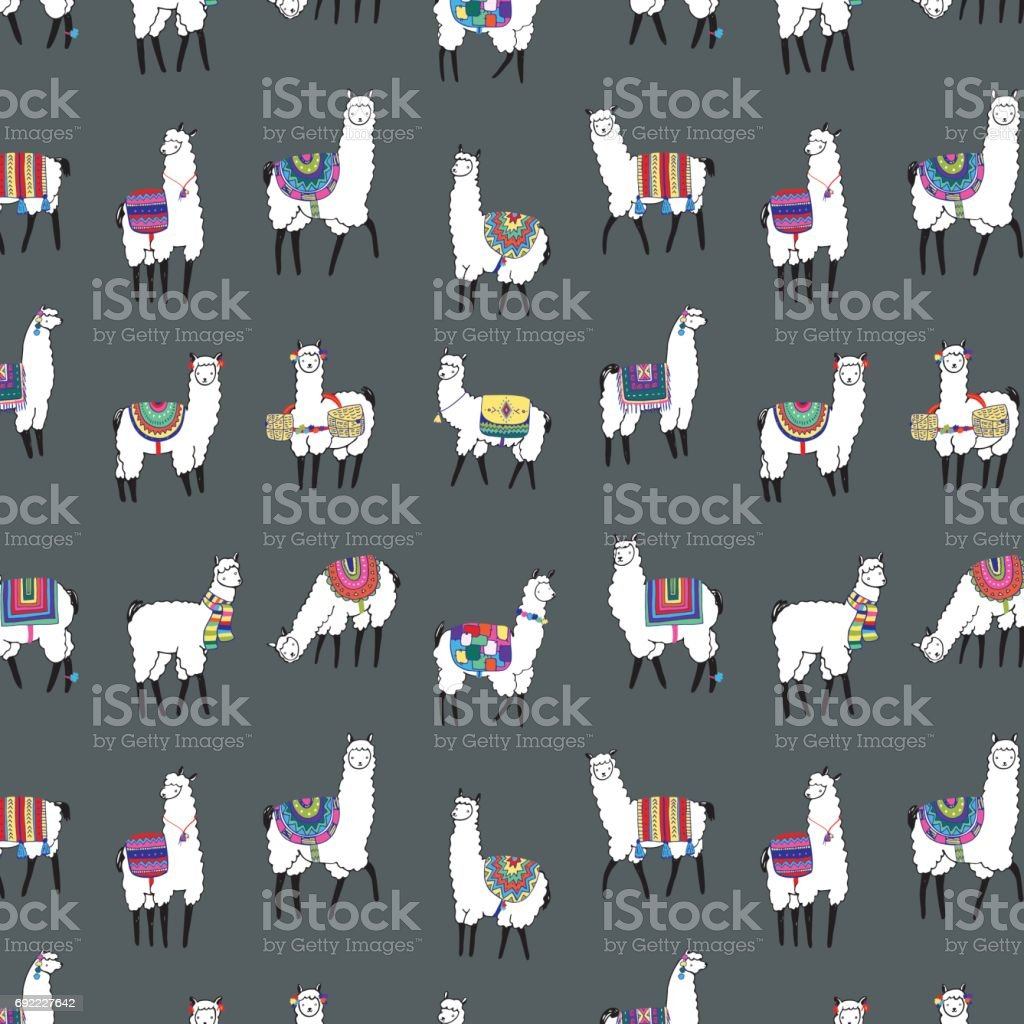 lama animal vector color pattern vector art illustration